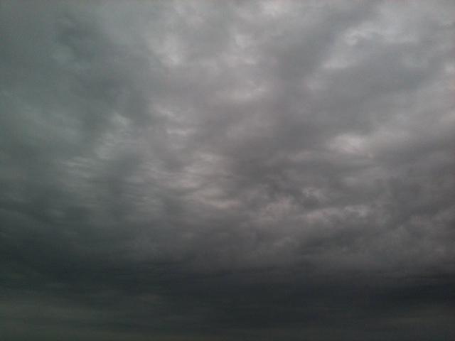 20111019-084817.jpg