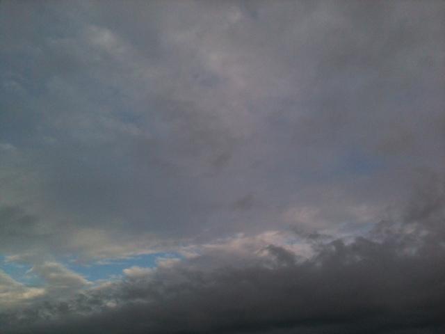 20111116-084835.jpg
