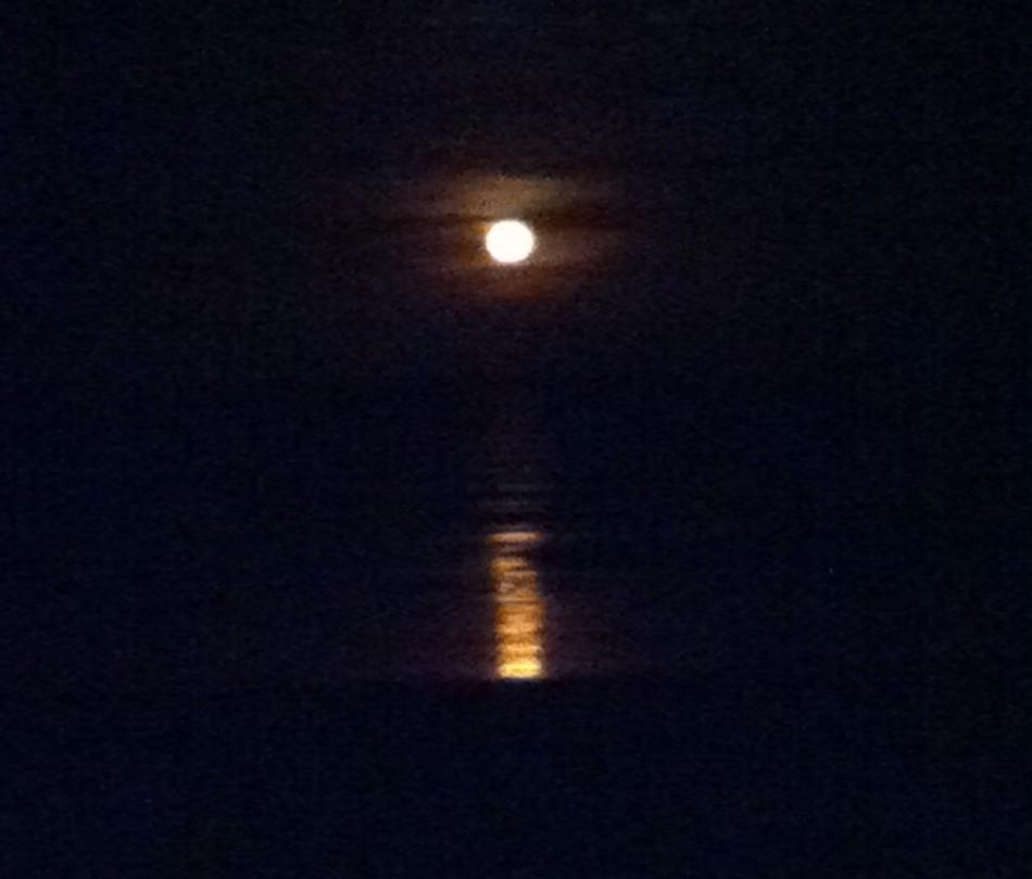 A Thankful Moon